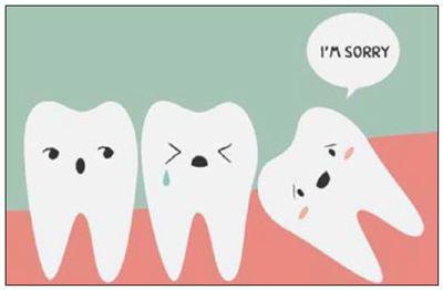 智齿的拼音_智齿的读音_智齿的英文 - 词语智齿