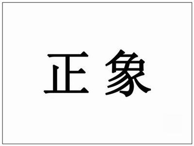 正象的拼音_正象的读音_正象的英文 - 词语正象