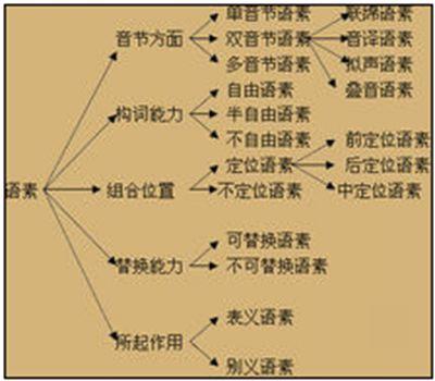 语素的拼音_语素的读音_语素的英文 - 词语语素