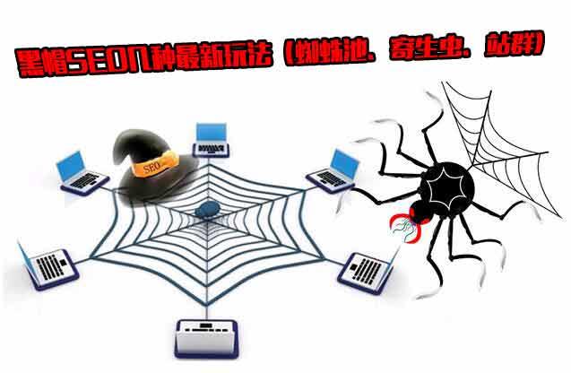 揭开黑帽SEO的神密面纱:蜘蛛池、寄生虫、站群