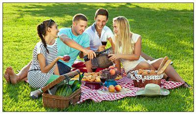 野餐的拼音_野餐的读音_野餐的英文 - 词语野餐
