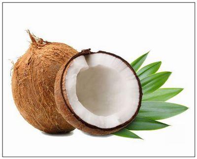 椰子的拼音_椰子的读音_椰子的英文 - 词语椰子