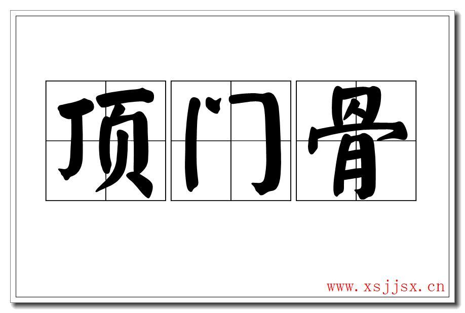 《顶门骨》拼音字母/字读音/英语/繁体字 三字词语