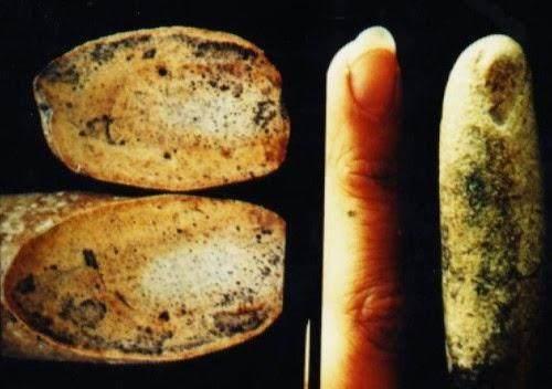 无法解释的考古发现 指向人类有一个完全不一样的历史?