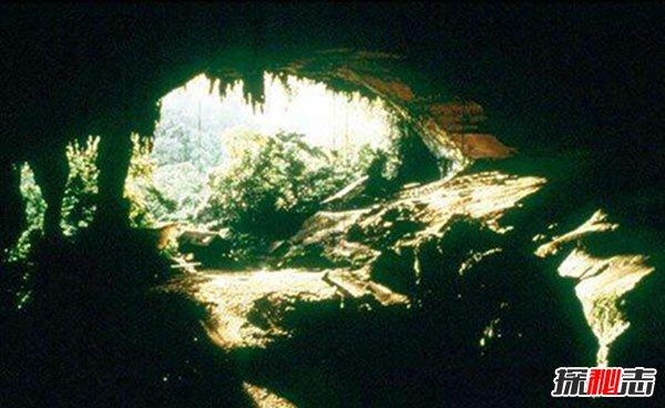 印尼爪哇谷洞真相揭秘,被称为魔鬼洞的里面有什么?